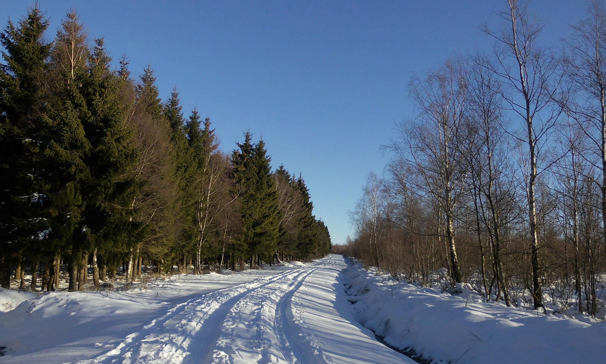 Poschleyer Weg Richtung Wollerscheid